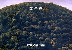 葉子奇 2007 走過風景的心情
