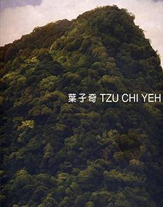 葉子奇 2009 風景.台灣
